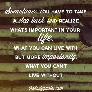 Sometimes you have to take a step back and realize what's important in ...