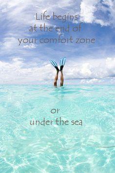 ... zone or under the sea. l Beach Quotes l www.CarolinaDesigns.com