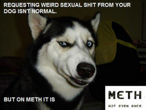 "Funny ""This Is Not Normal"" Meth Memes (35 pics) - Picture #28"