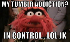The Muppets Meme. Animal