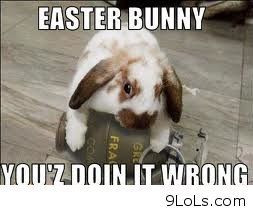 funny easter bunny funny pictures funny quotes funny videos 9lols com