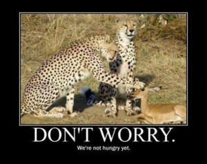 Dont_Worry_funny_picture