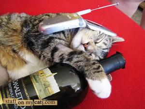 True.. friends shouldn't let friends drunk dial.