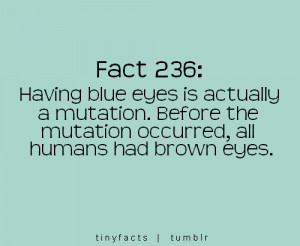 Fact Quote ~ Having blue eyes is actually a mutation. Before the…