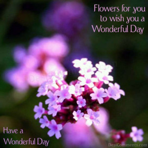 ... com goodday wish you a wonderful day img src http www desicomments
