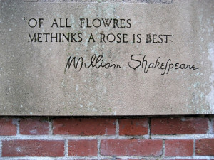25+ Marvelous William Shakespeare Quotes
