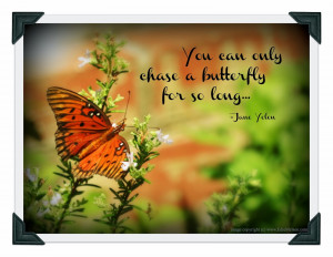 You can only chase a butterfly for so long... -Jane Yolen