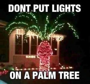 Never Put christmas Lights