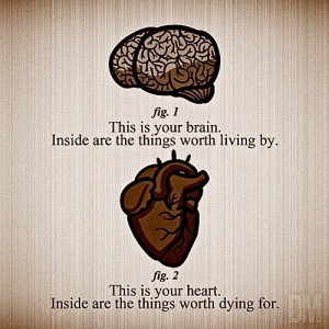 Brain & Heart via Quotes and More Quotes