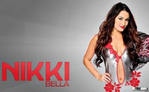 WWE Divas Nikki Bella & Brie Bella Wallpaper HD