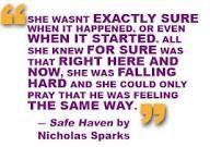 Safe Haven Nicholas Sp...