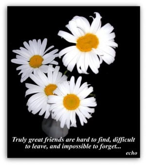 comment friendship quotes tags friendship