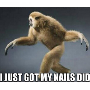 just got my #nails did! Who'd knew a primate could say it all! # ...