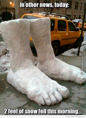 Funny Pictures - 2 feet of snow fell this morning