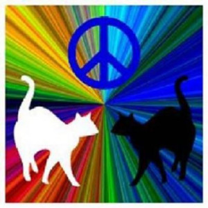 Cool peace pic