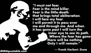 must not fear, fear is the mind killer, fear is the little death