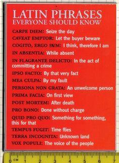 latin phrases more idea quotes random learning latin writing latin ...