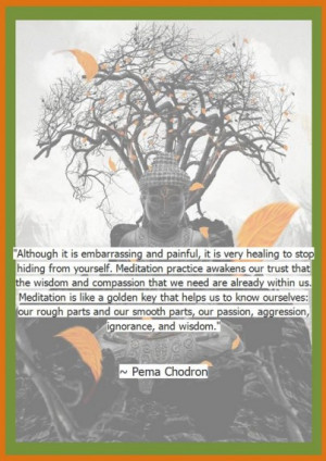 Pema Chodron Quotes Daily – Updated Regularly- Come Back and Check ...