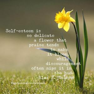 Great self-esteem quote