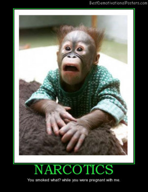 narcotics-monkey-ape-drug-funny-best-demotivational-posters