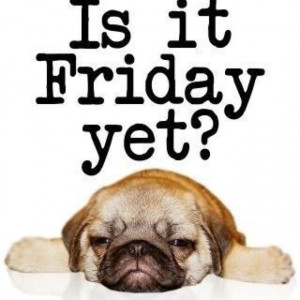 Is it Friday Yet !!!!!