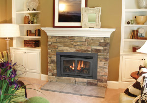 gas fireplace insert fireplace inserts wood stove fireplace decor