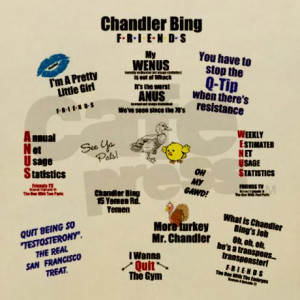 chandler_bing_quotes_blanket_wrap.jpg?color=Creme&height=460&width=460 ...