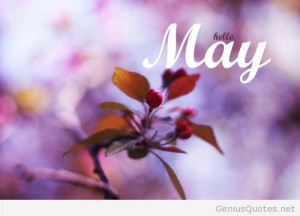 Hello may spring quote