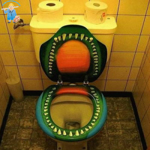 there might be some toilets that even our most seasoned plumbers would ...