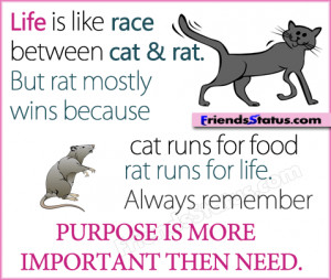 life race purpose quotes image