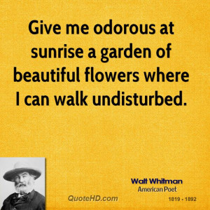 ... at sunrise a garden of beautiful flowers where I can walk undisturbed
