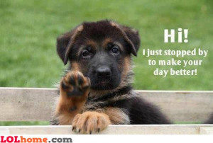 Have a good day greaaaat! – Funny Images