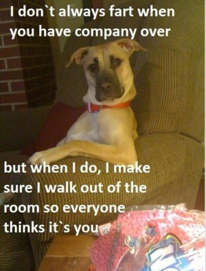 Funny Animal Pictures – Part I~ 23 Pics