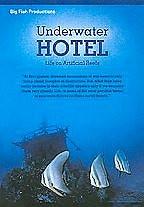 Underwater Hotel Life On Artificial Reefs 2008