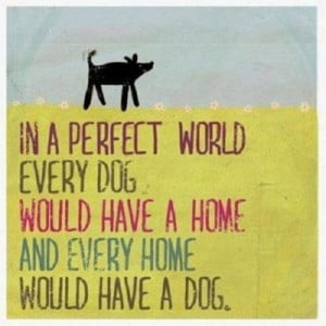 In a perfect world...