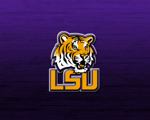Need an LSU Design for my Cap One Credit Card