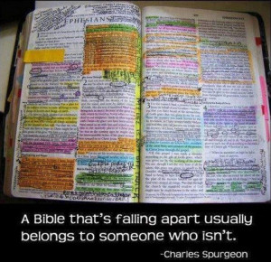 QUOTE* The dirtier your Bible gets, the cleaner your life will become ...