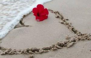 Sea Love Heart Image