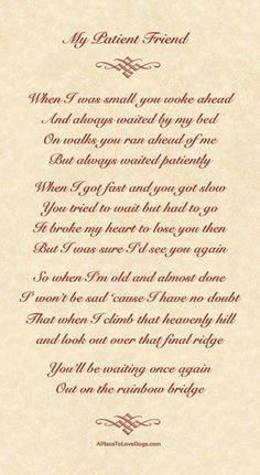 My Patient Friend – A Poem About My Doggy #Poem #dog #rainbowbridge ...