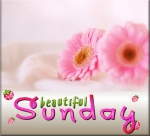 Sunday-flower-day-sunday-weekdays-P.jpg