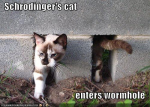 schrodinger-enters-a-wormhole.jpg