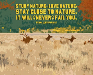 Study Nature Love Nature 8x10 Matted Giclee Art Print by Earmark, $ 25 ...