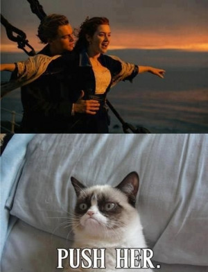 Grumpy Cat watches Titanic.