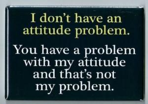 Attitude Problem FRIDGE MAGNET funny quote bad personality behavior