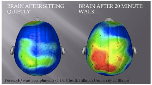 Ummm yah. Who's up for a 20-minute walk during lunch hour?! (more ...