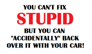 Troll Kill: You Can't Fix Stupid, But You Can