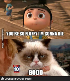 Post your favourite Grumpy Cat Meme pictures here
