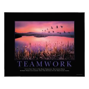 Teamwork Framed Motivational Print (732272)