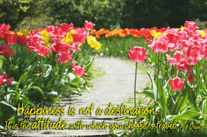 Quote Garden: Happiness
