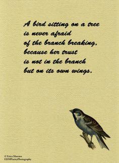 Bird Sitting On a Tree Quote-Inspirational Quotes-Erica Massaro ...